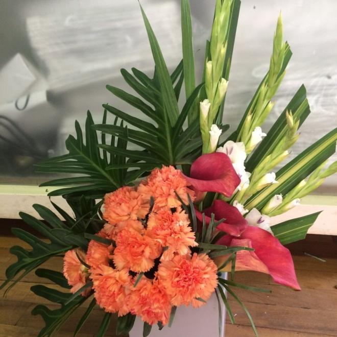 Carnation Flowers for Mom